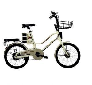 foto-sepeda-listrik-kualitas-juara-yang-murah-dan-ramah-lingkungan-4